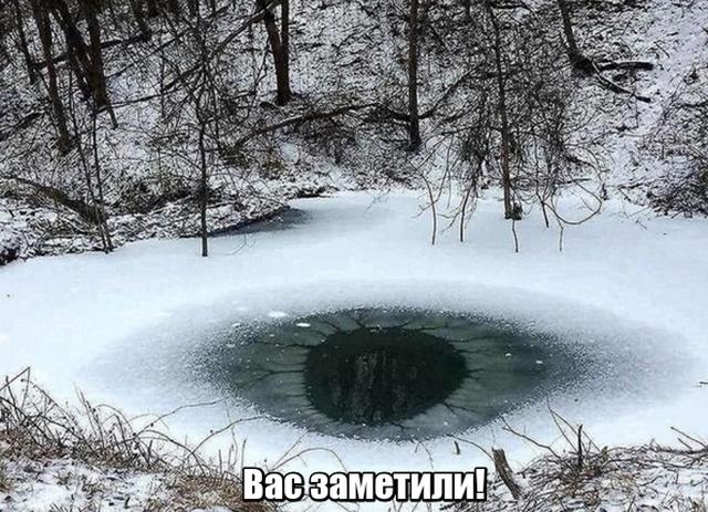 Подборка прикольных фото №2048 (40 фото)