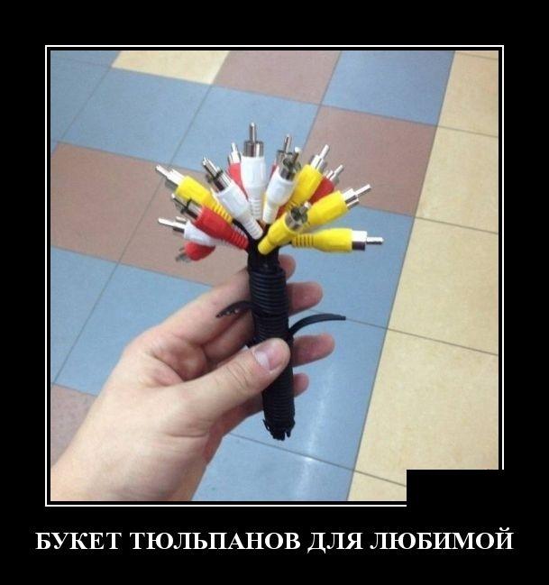 Демотиваторы №2056  (30 фото)
