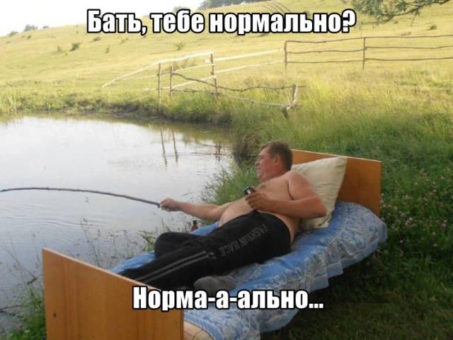 Подборка прикольных фото №2195 (62 фото)