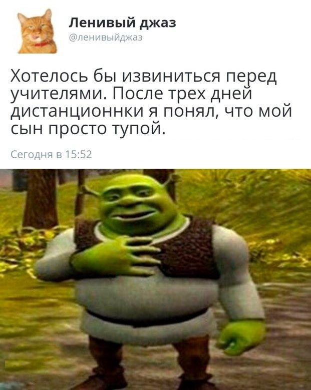 1586497173_0047.jpg