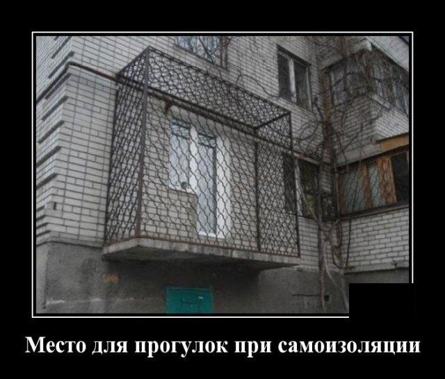 Демотиваторы №2352 (20 фото)