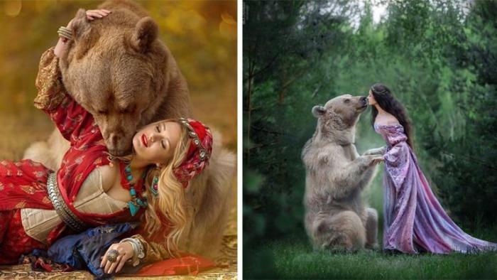 Бурый медведь из России делает успешную карьеру модели (20 фото)